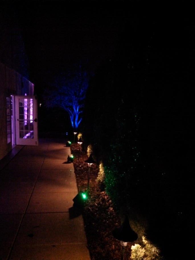 Outdoor Lighted Features